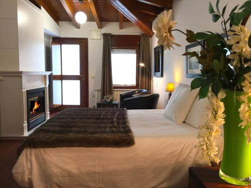 Superior Double Room with fireplace and Spa Access Hotel Del Lago 3