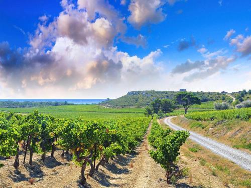 Отель Farm Stay Narbonne-plage 4397 0 звёзд Франция