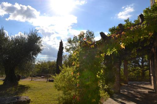 Отель Agriturismo Belvedere 0 звёзд Италия