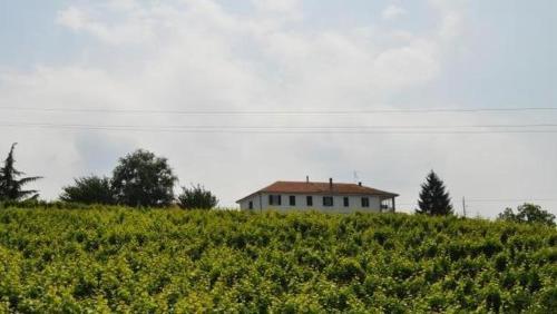 foto Agriturismo Ai Piacentini (Camo)