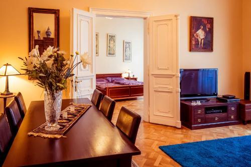 Apartment Vodickova 11
