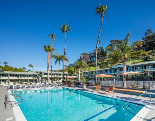 25 Off The Atwood Hotel San Diego Seaworld Zoo Promo