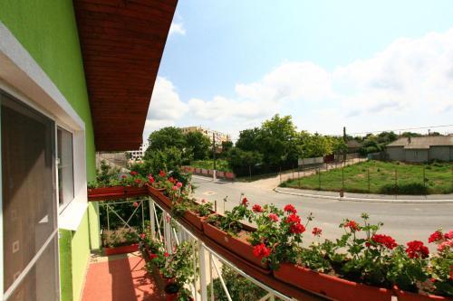 Отель Casa Nelu Pescaru 0 звёзд Румыния