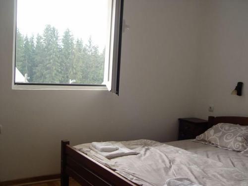 Отель Apartments Durmitorska Vila 3 звезды Черногория