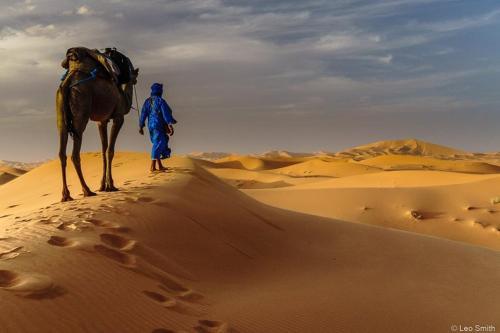 Picture of Hostel - le Gout du Sahara