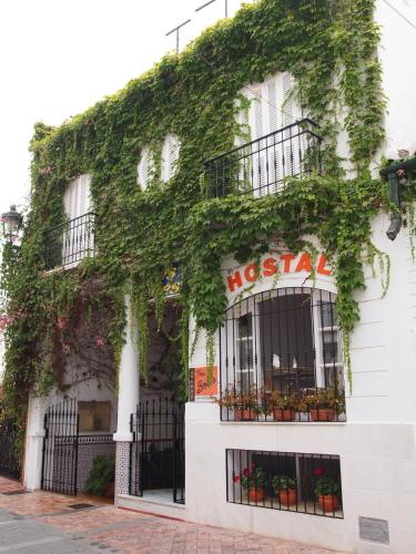 Picture of Hostal Tres Soles
