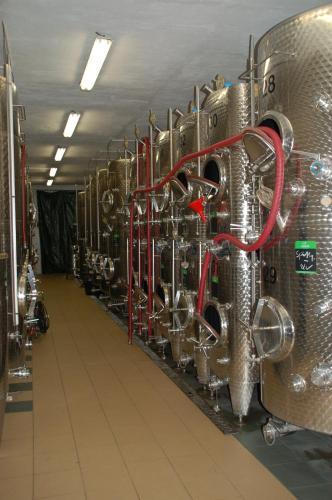 Naumburger Wein & Sekt Manufaktur