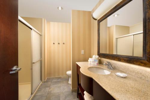 Hampton Inn & Suites San Antonio-airport Tx