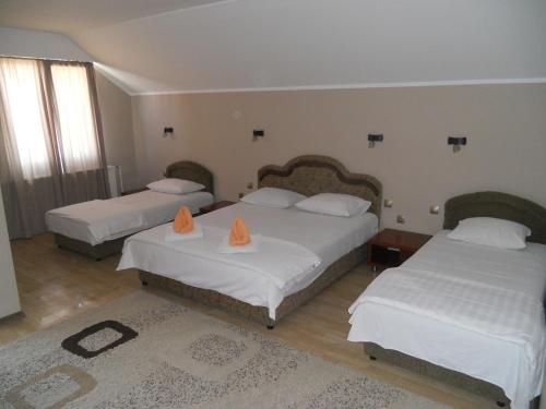 Picture of Guest house Vila Bor