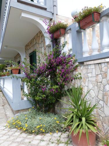 Отель Apartments Ana 2869 3 звезды Хорватия