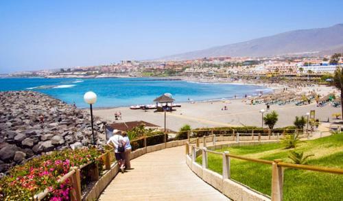 Apartment Playa Torviscas