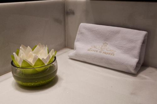 Suite Deluxe Nexus Valladolid Suites & Hotel 5