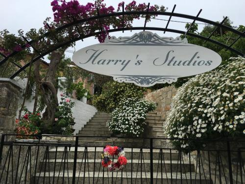 Harry's Studios