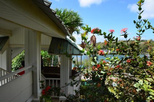 Yap Pacific Dive Resort, Colonia