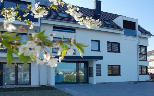 Отель Ferienhaus Seezeichen 0 звёзд Германия