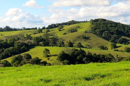 Maleny Springs Farm