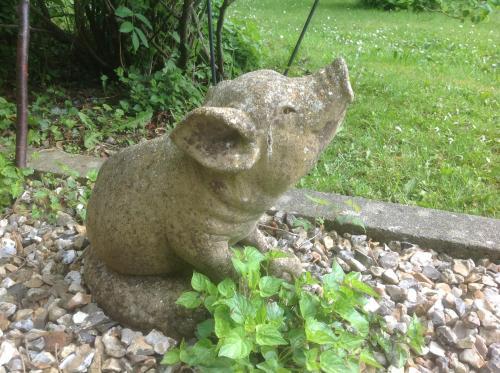 Au fond du jardin maison d 39 h tes saint saens haute for Au fond du jardin saint saens