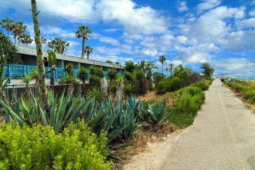 ocean villa inn san diego county california. Black Bedroom Furniture Sets. Home Design Ideas