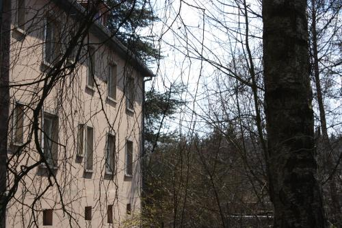 g te du moulin location saisonni re 10 rue du moulin niefern uhrwiller 67350 uhrwiller. Black Bedroom Furniture Sets. Home Design Ideas