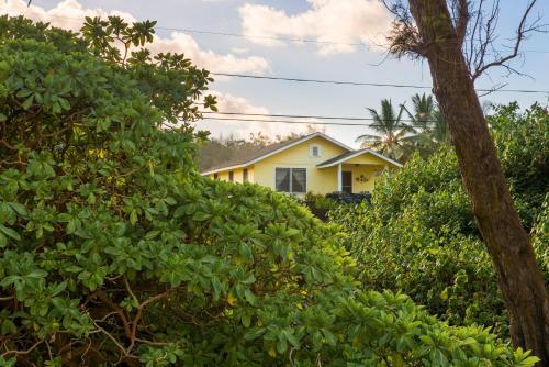 Hibiscus Hula Beach Cottage