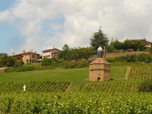 Gite Domaine des Vignes