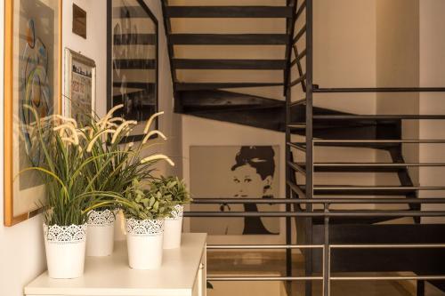 Hotel Modigliani - 25 of 44