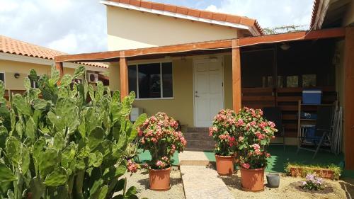 Bubali Studio, 棕榈滩
