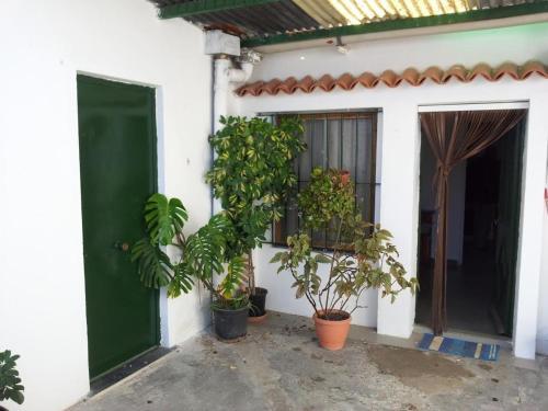 HotelHouse in Jerez de La Frontera Cádiz 101696