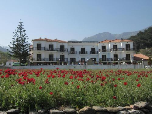 Agios Konstantinos**  in Agios Konstantinos