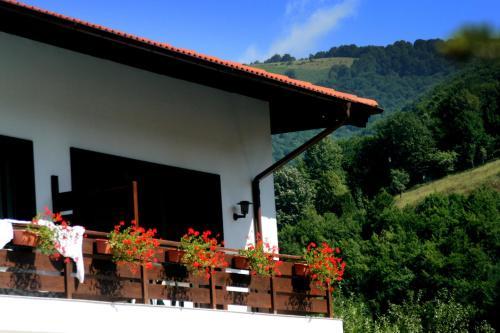 Spa Hotel Planinata