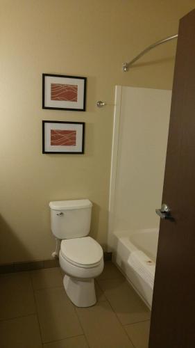 Comfort Inn & Suites Near Mt. Rushmore