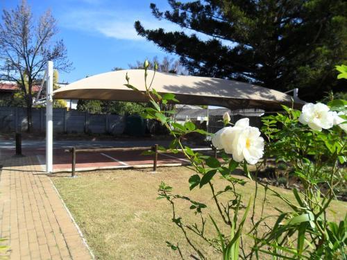Convent Hill Lodge