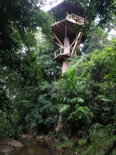 Treehouse, Travellers Hideout
