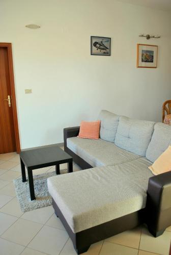 Apartment Alenka