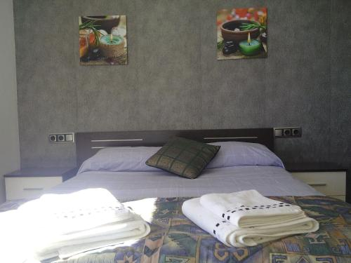 Comapedrosa base apartment 04