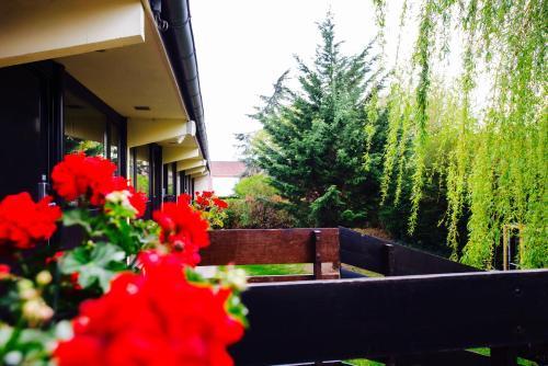 hotel pavillon des gatines h tel 46 ter rue pierre curie 78370 plaisir adresse horaire. Black Bedroom Furniture Sets. Home Design Ideas