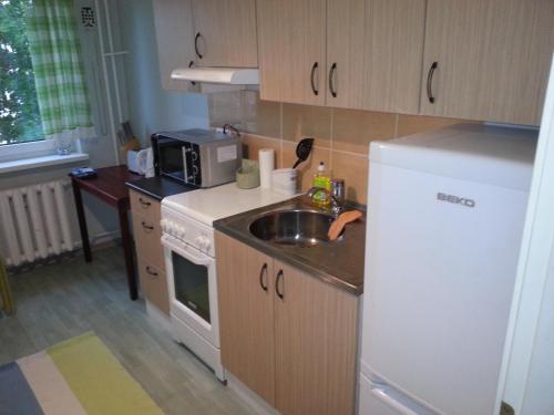 Kivi Guest Apartment