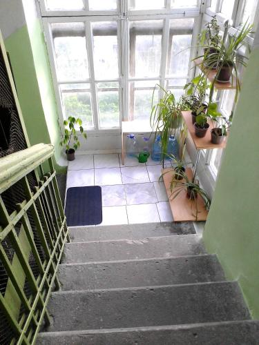 Apartament on Lenina