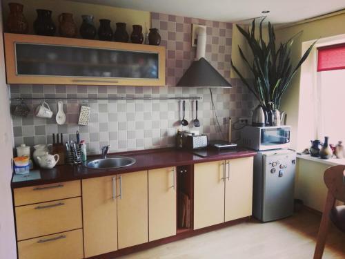 Green Hall apartment, Ignalina