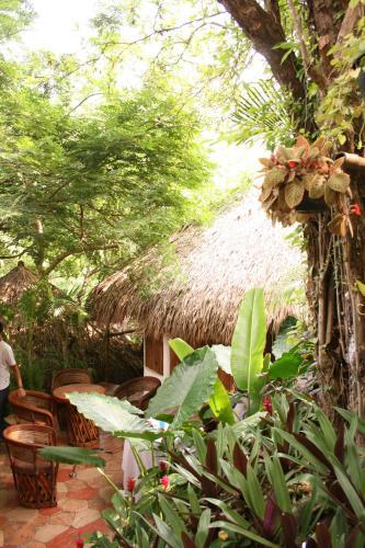 Property Image#5 Cabañas Biuzaa