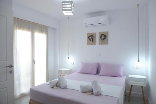 Axos Apartments