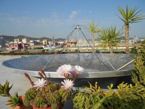 Picture of Hostel Albania