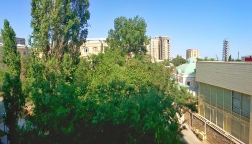 Апартаменты Низами 118