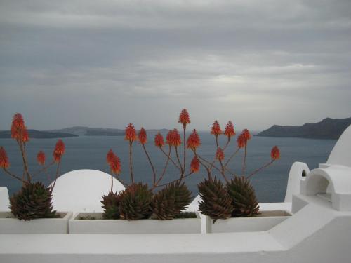Villa Egea by Connexion