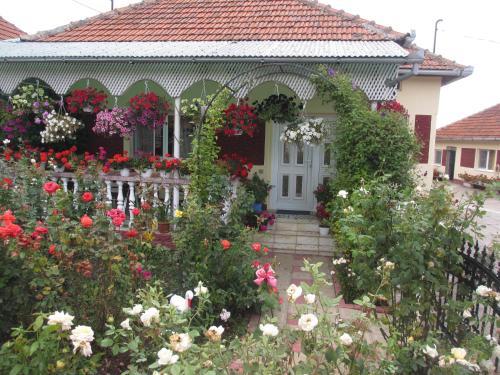 Отель La Mosu-n Retezat 0 звёзд Румыния