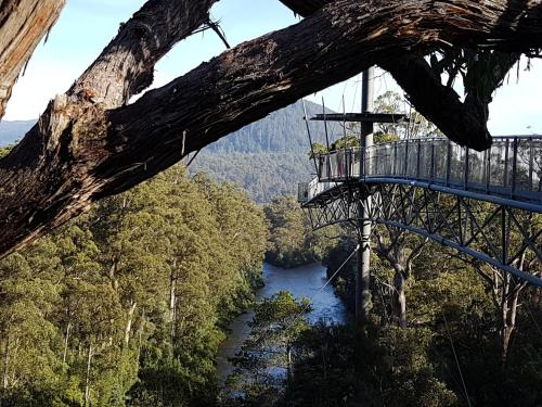 Tahune AirWalk Lodge