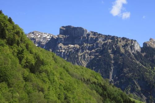 Alps Hoamat