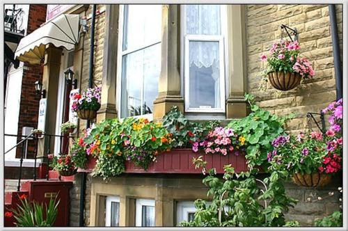 Photo of Belle View Hotel Bed and Breakfast Accommodation in Skegness Lincolnshire