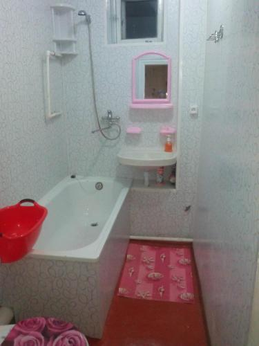 Отель Apartment Chkalova 0 звёзд Россия