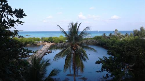 Отель The Kelapa Karimunjawa Beach & Resort 1 звезда Индонезия